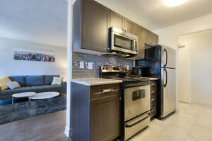 Beautifully renovated apt w/ great amenities!