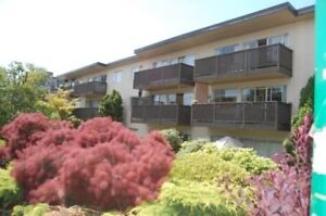 Large 1 bedroom facing East with private balconie