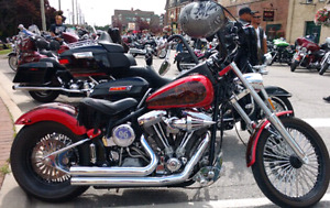 2008 Harley Softail Custom