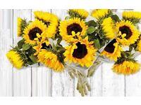 Florist work wanted