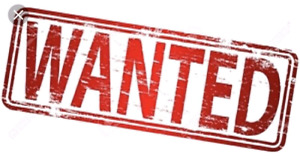 Wanted Serviced Lot