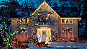 Christmas light stakes for Driveway, Sidewalk etc. Peterborough Peterborough Area image 1