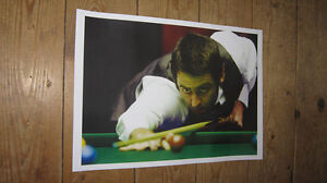 Ronnie O'Sullivan Snooker Legend Cue POSTER