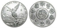 Tube (20 -One Ounce Coins) 2012 Mexican Libertad