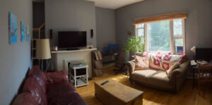 Roommate wanted in sweet North End spot for September