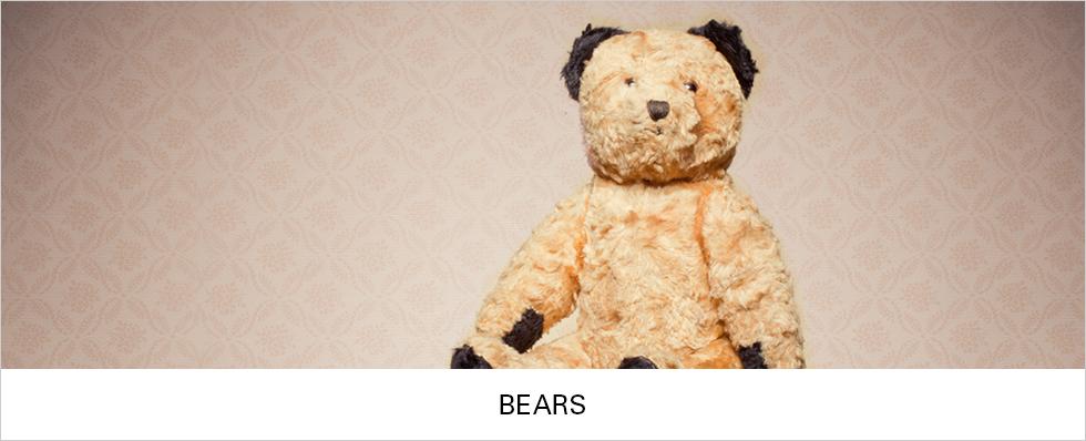 Bears | Shop Now
