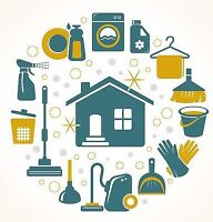 Detailed House Cleaner