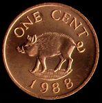 Bushhogmag Coin s