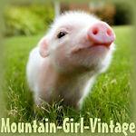 mountaingirlvintage@gmail.com