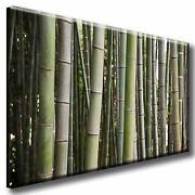 Leinwand Bambus