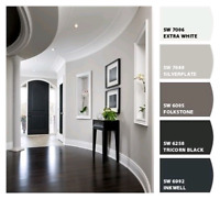 Professional Painter ☎ Dedicated To Quality (306) 880-6944