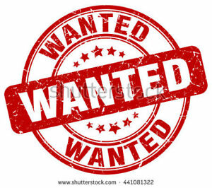 Wanted: Niagara Falls- 1 Bdroom Apt  ASAP In Town