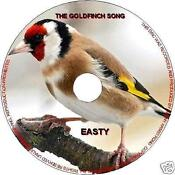 Goldfinch CD