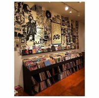 Looking for someone that can build me vinyl record display