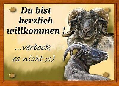 Schaf  / Heidschnucke  /   Schild  / Bild  / B24