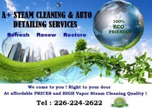 A+ Steam Cleaning & Auto Detailing Services