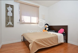 BEAUTIFUL ROOM FOR RENT IN A HOUSE SCARBOROUGH- 1 FEMALE ONLY