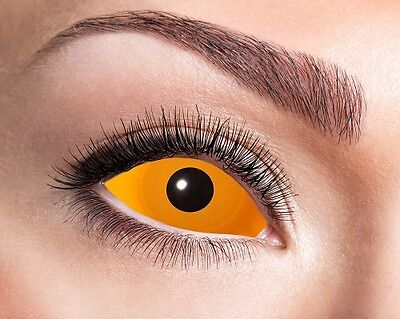 Eyecatcher Sclera Linsen Orange Eye S06 farbige 6 - Orange Kontaktlinsen