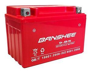 YTX9-BS battery for KAWASAKI Ninja ZX-6R, ZX600 Ninja, ZZR 600, EX300 Ninja 300