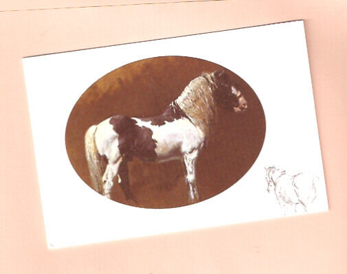 Horse Notecards Note Card The Gypsy Cob by Malcolm Coward Pack of 5 LAST PACK!*
