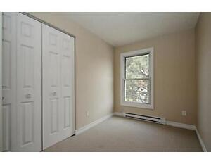 Stanley Park 2 Bedroom Townhouse Condo for Rent-Avail.2017/01/01 Kitchener / Waterloo Kitchener Area image 7