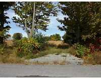Build your dream home on this large country lot! Don't miss out!