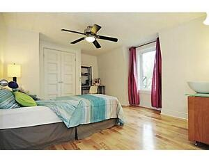 Subletting 1 Bedroom (May-August 2017). Downtown/Sandy Hill