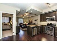 Fully Furnished Executive 1 Bedroom Condo in the Belmont Village