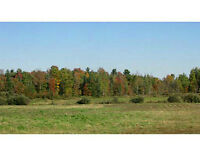 Lot for Sale: 00 Totem Ranch Road West