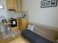 Outstanding new studio in Pimlico, Belgrave Road/ £330pw