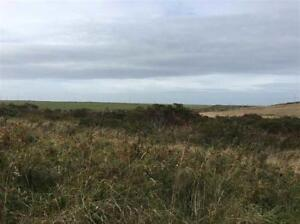 just listed ocean front lot for sale
