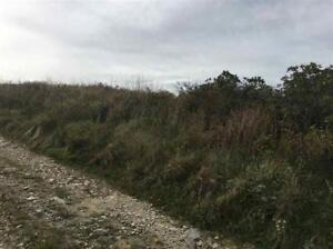 New listing  ocean front land
