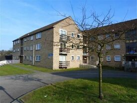 Amazing modern 2 double bedroom raised ground floor flat to let