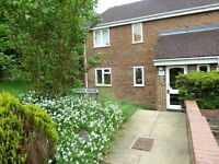 AVAILABLE NOW! TWO BEDROOM GROUND FLOOR APARTMENT