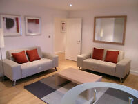 Stunning 1 bed in QUEENSGATE HOUSE BOW E3 MILE END ROAD CHURCH BROMLEY DEVONS CANARY WHARF