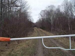 Newly listed 97 acres of land with road close to Yarmouth