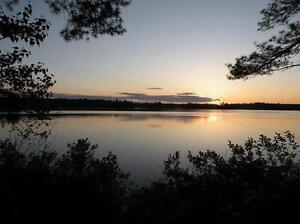 Newly priced 17.4 acres with 180 +- lake frontage for sale