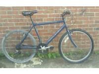 Raleigh lightweight bike
