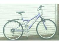 Ladies hybrid bike