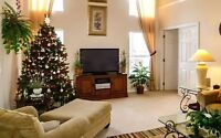 The Holiday Season Is Here… Deep Cleaning $120 Krissy & Mark