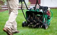 Lawn care spring clean up special. Power rake, vac aeration