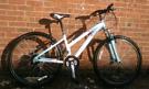 Ladies Raleigh light aluminium frame bike