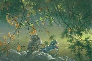 On The Pond Wood Ducks Print Robert Bateman