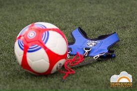 Llera Sport Skill Ball. Price 24.95 £
