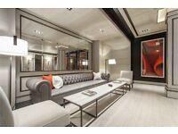 ( 2 ) Two bedroom in Embassy Gardens, Ambassador Building, Nine Elms / Vauxhall / Battersea £685 pw!