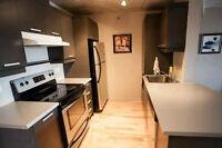 Beau 4 1/2, meublé, AC, garage, Metro Papineau