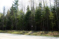 Looking to trade or lease undeveloped property in Yukon
