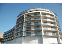 Call Brinkley's now to view this modern, one bedroom, apartment in Reed House. BRN1988938