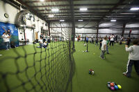 Baseball, softball  training indoor on turf! Joey Bats! Play