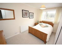 3 Bedroom House for Rent, Hastings